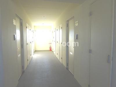 明るい共有廊下です。