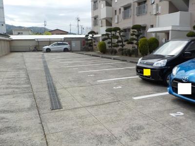 【駐車場】田上コーポラスC棟