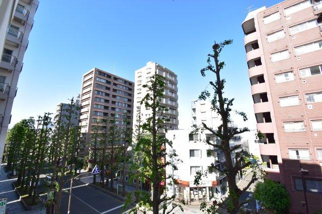 緑豊かな並木通りを見渡せる眺望。気持ちの良い風が吹き込みます。