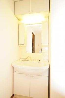 【コスメカウンター】 大きな洗面台にシャワー水栓。 台下には大きな収納を完備し、 鏡面横には歯ブラシなど小物を収納できる棚が設置され、 散らかりがちなシンク周りをスッキリとお使いいただけます。