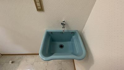 洗面台以外に洗い場があります。