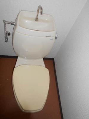 【トイレ】タウニィ料理松