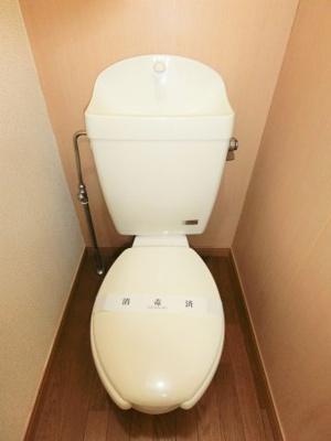 【トイレ】ルミナージュ南上宿