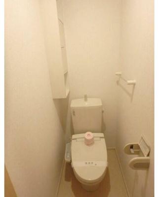 【トイレ】コジウスコ
