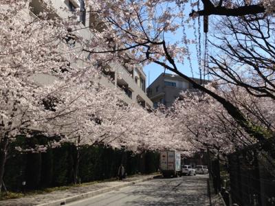 【周辺】ルネシーズンズ千里の丘7番館