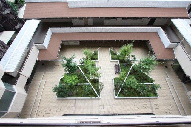 中庭があります:八潮新築ナビで検索♪