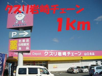 くすり岩崎チェーンまで1000m
