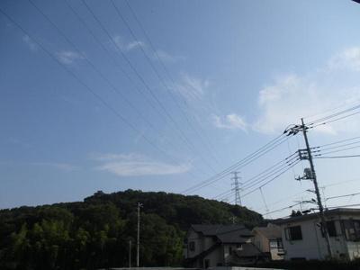 青い空が広がります