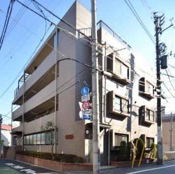 【展望】コスモフラワー