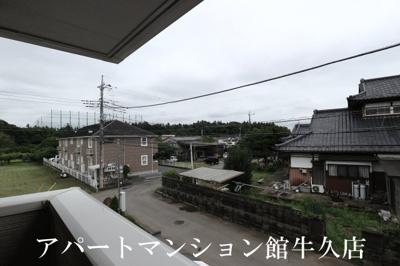 【展望】デスパシオ