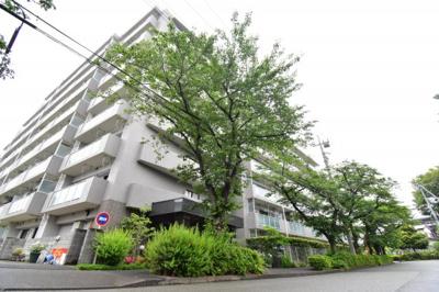 全89戸のコミュニティは管理体制も良好。春には多摩川沿いやマンション前の木々も桜で満開になります。