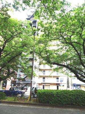 【その他】横浜線 相模原駅 中央区矢部1丁目 レクハイム相模原2 501号室