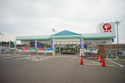 コメリ太田下田島店まで1200m