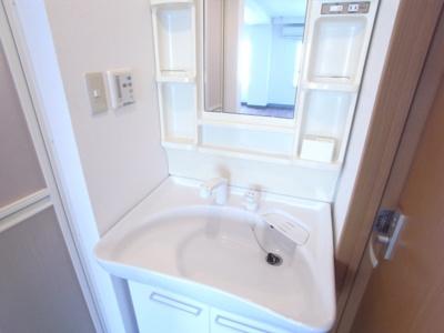 シャンプードレッサー洗面台