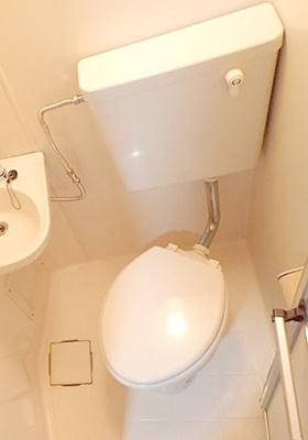 【トイレ】ジプソフィラ板橋本町