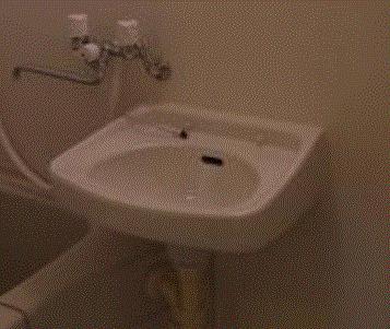 【洗面所】ロータスガーデン亀戸