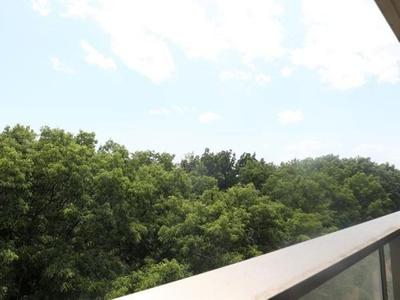 【展望】A151 エルシオ玉川上水