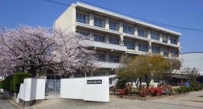 松山市清水小学校 1128m