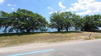 玄関出れば湖岸沿いの桜並木が目の前です。