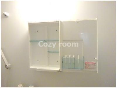 浴室の洗面台上部には、便利な収納スペースあります。