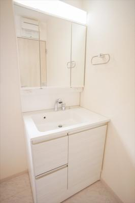 3面鏡裏は収納になっております。シャワー水栓。