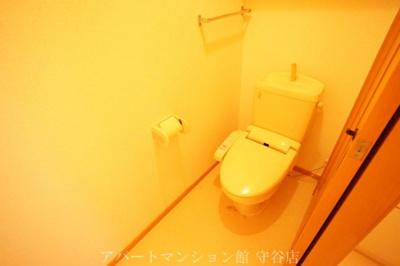 【トイレ】エヴァーグリーン
