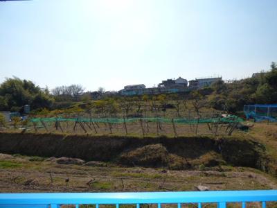 【展望】緑荘