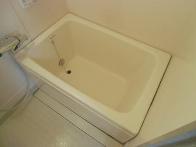 【浴室】シャインクロコ