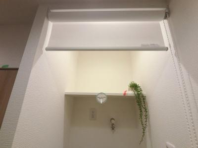 洗濯機置場上部の棚です。 洗剤などを置くことができます。