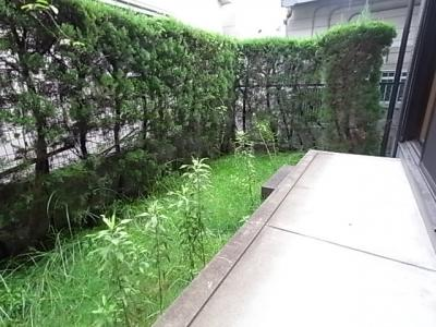 【庭】エバグリーンハイツA棟
