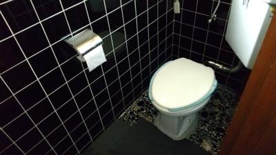【トイレ】【中古戸建】河西中学校区・54290