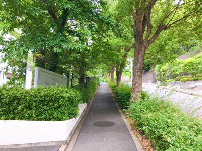 マンションの前は緑が多く、しっかり歩道がありますよ♪万博公園まで徒歩で行ける距離です♪