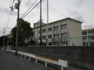 木本小学校 1.4km
