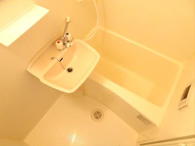 【浴室】Fortune's桜上水