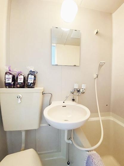 バスルームにある洗面台です!鏡の前で身支度ばっちりできちゃいます◎※参考写真※