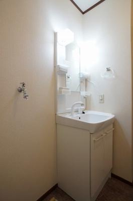 独立洗面所内の洗髪洗面化粧台と洗濯機置場です(写真は他室です)