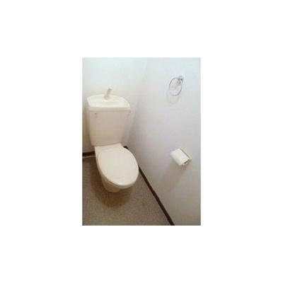 アムール エチゴのトイレ