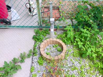 庭には水栓があります♪ペットの足を洗ったり、お子様のプール遊びをしたりと何かと便利です♪