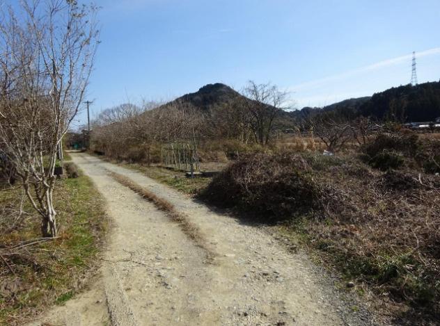 【前面道路含む現地写真】日高村岩目地