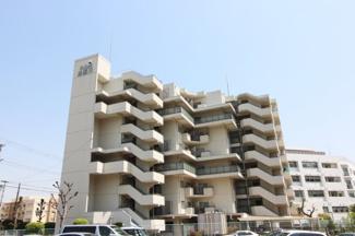 【ドルミ逆瀬川】地上8階建 総戸数28戸 ご紹介のお部屋は最上階の8階部分です(^^)