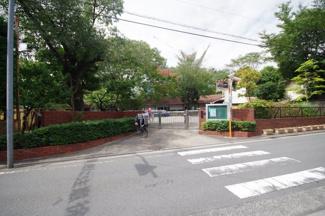 近隣幼稚園