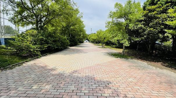 マンション横にはお散歩コースにピッタリの道があります。