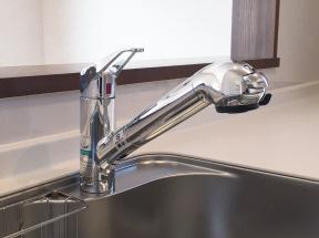 浄水器内蔵型シャワー水栓 浄水カートリッジ内蔵で場所を取らずにスッキリ。水栓は使い勝手の良い、取り外し可能なシャワーヘッドタイプ。