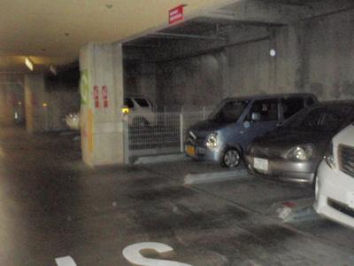 【駐車場】サザントゥリーⅡ