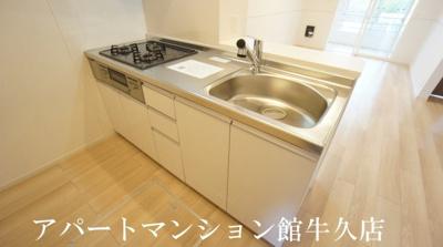 【キッチン】ラッポルティⅡ