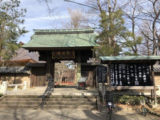九品仏 950m 9つの仏様がいらっしゃるお寺です。 荘厳な雰囲気でピリッと気が引き締まります。 日々のお仕事から離れて時々立ち寄るのも良いかもしれません。