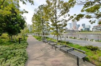 東雲運河 ベイズ タワー&ガーデン