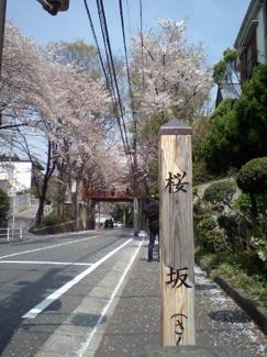 900m 皆様ご存じの「桜坂」春は桜のアーチになっていて とても美しい場所です。