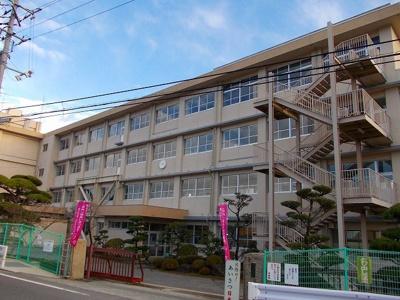 加茂中学校まで450m