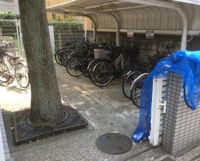 屋根付きの駐輪場、無料です